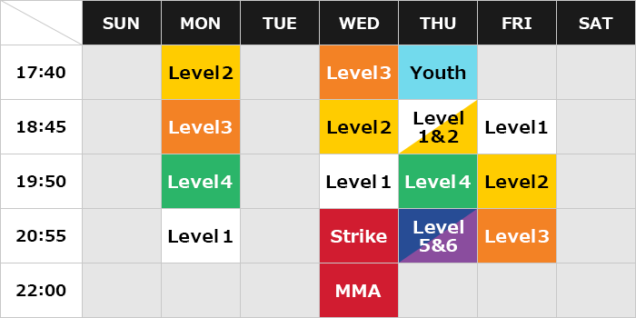 Aoyama Training Center Class Schedule